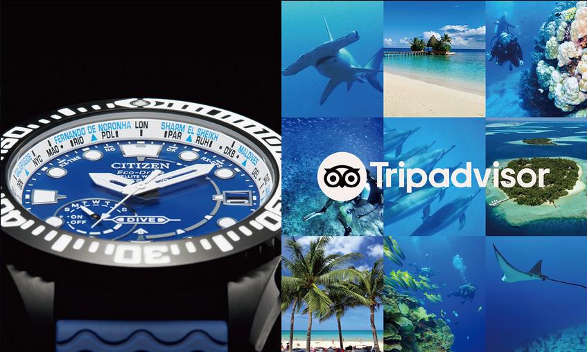 promaster gps diver tripadvisor